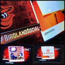 birdlandsocial1